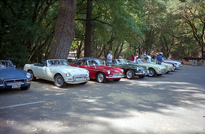 British car club touring up in Marin county.  The club featured MGC cars.  These cars had a 3-liter 6-cylinder engine, with 150 hp.  Our MGC is the fifth car in the lineup from the left.  Note Martha putting her sweater or or off!
