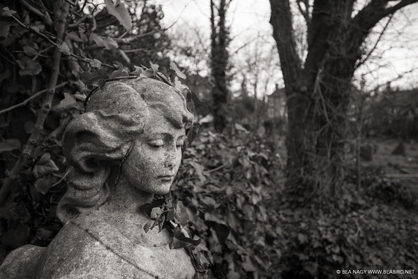 Highgate Cemetery East | London