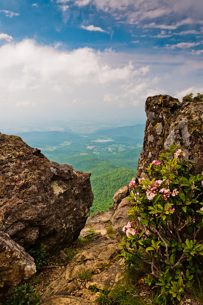 View of Stony Man Cliffs, Shenandoah Natiional Park, Virginia