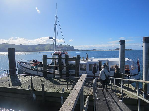 Otago Peninsula New Zealand 2016