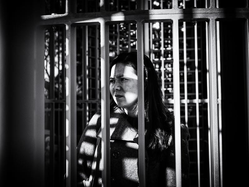 Art Cage