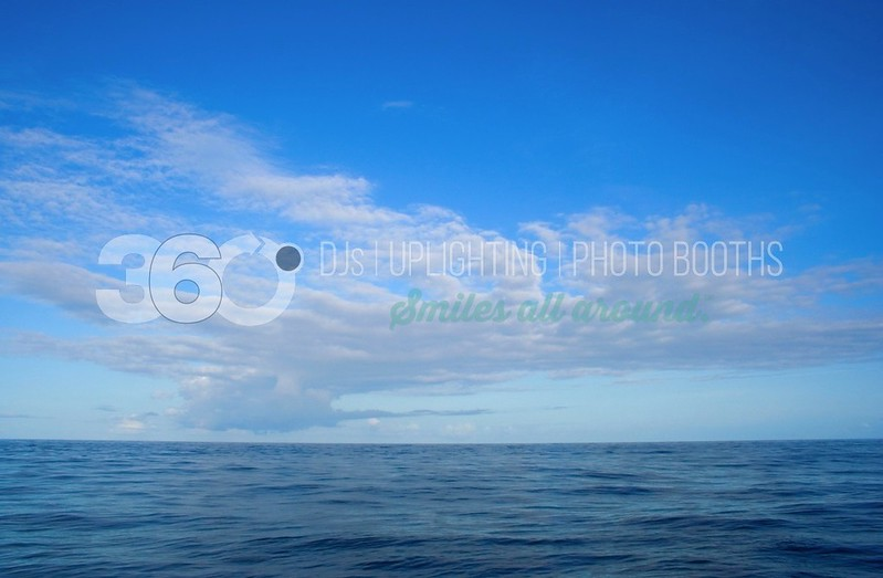 Ocean Horizon_batch_batch.jpg