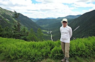 Crawford Notch Faves - Elephant Head, Willard and Two Cascades (July 2)