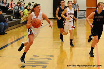 Jonesville vs Adrian Madison Girls V Basketball