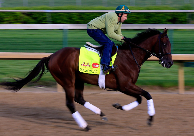. Kentucky Derby contender Samraat in action on the track during early morning workouts at Churchill Downs on May 1, 2014 in Louisville, Kentucky.  (Photo by Jamie Squire/Getty Images)