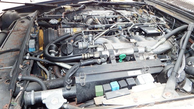 DSCF6609.JPG