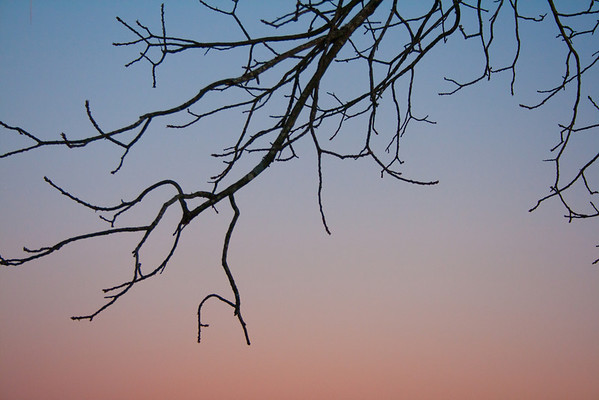 01-13-2011 Sunset Snow