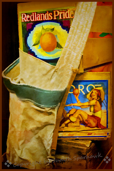 The Old Picking Bag
