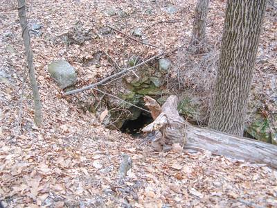 Kincaid Woods - 2/22/09