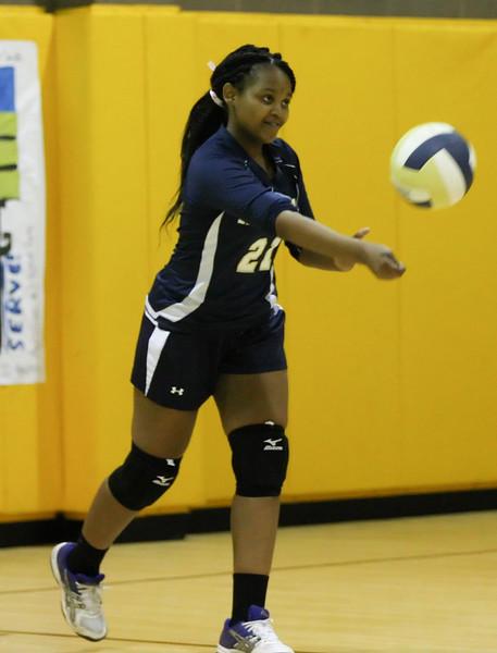 VCA-Volleyball-3.jpg