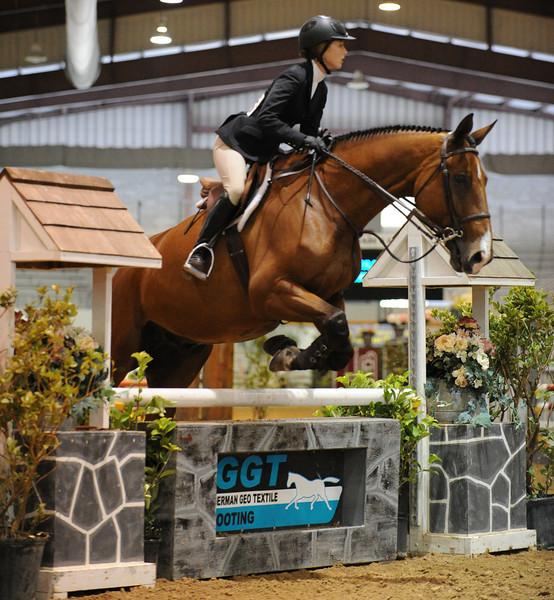Horse show (62).jpg