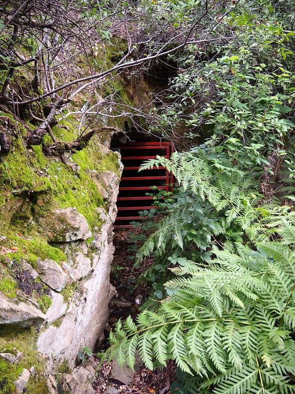 Mount Shasta Mine Trail Northern California