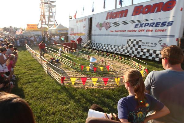 2012 Delta Fair - Pig Races