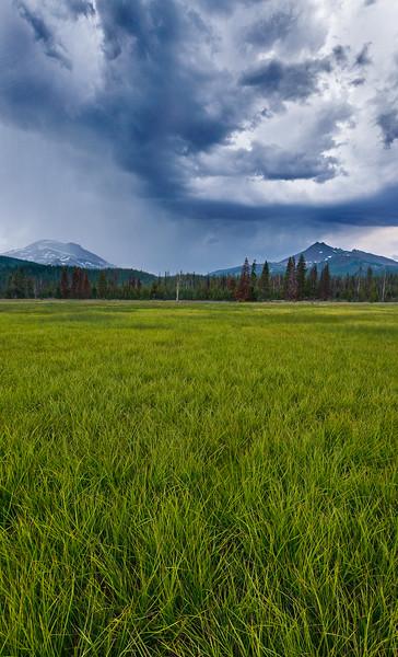 Stormy Meadow_Panorama1.jpg