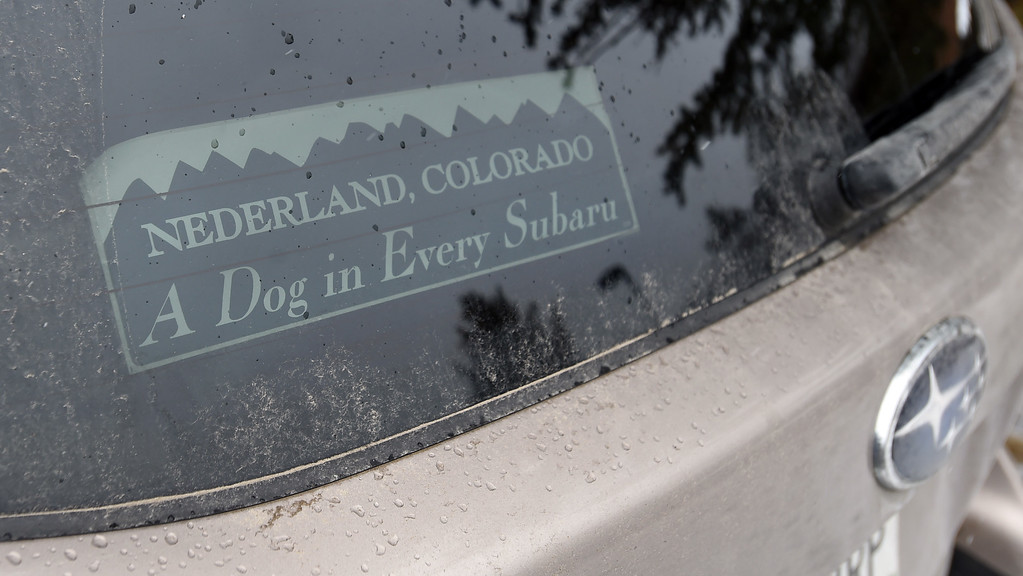 . Nice sticker seen on Saturday during 2018 Frozen Dead Guy Days in Nederland. The festival continues on Sunday. For more photos, go to dailycamera.com. Cliff Grassmick  Photographer  March 10, 2018