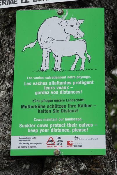 070626 7165 Switzerland - Geneva - Downtown Hiking Nyon David _E _L ~E ~L.JPG