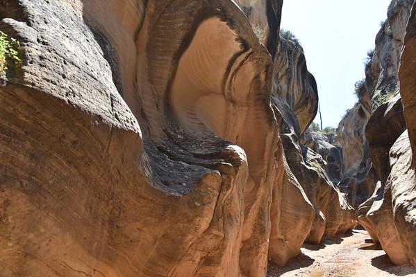 Willis Creek Slot Canyons Trip