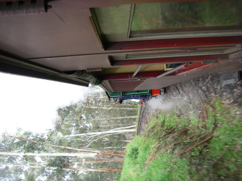 Puffing Billy and Phillip Island 045.JPG