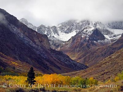 Autumn in Eastern Sierras