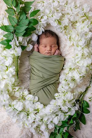 Rome's Newborn Shoot
