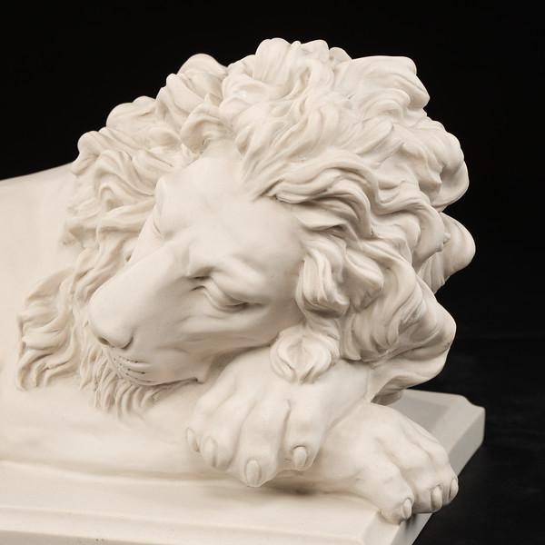 Large-Lions-408.jpg