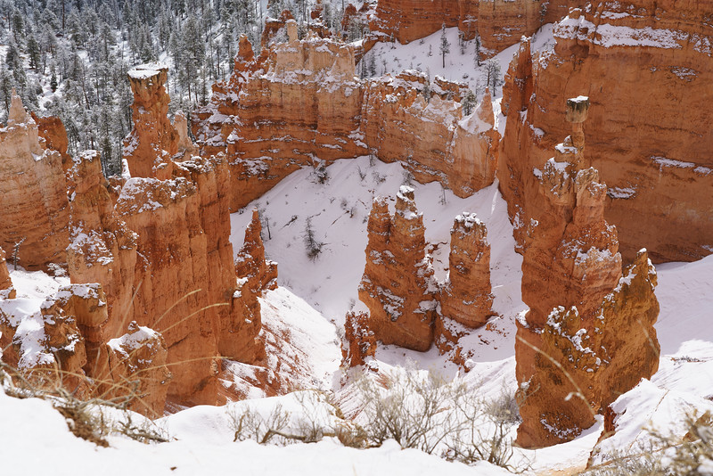 200319 - Bryce Canyon - 00404.jpg