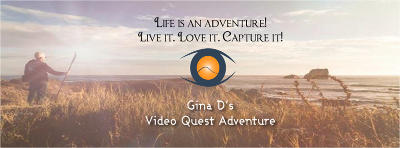 GINA_Logo-FB-event-photo-banner.png