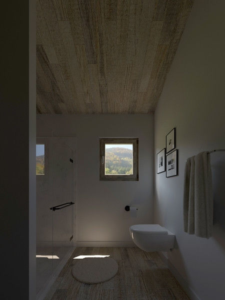 velux-gallery-bathroom-195.jpg