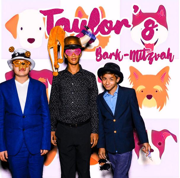 Taylors pawmitzvah-20817.jpg