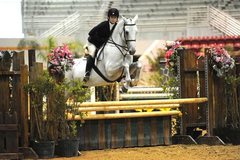 Horse show (23).jpg