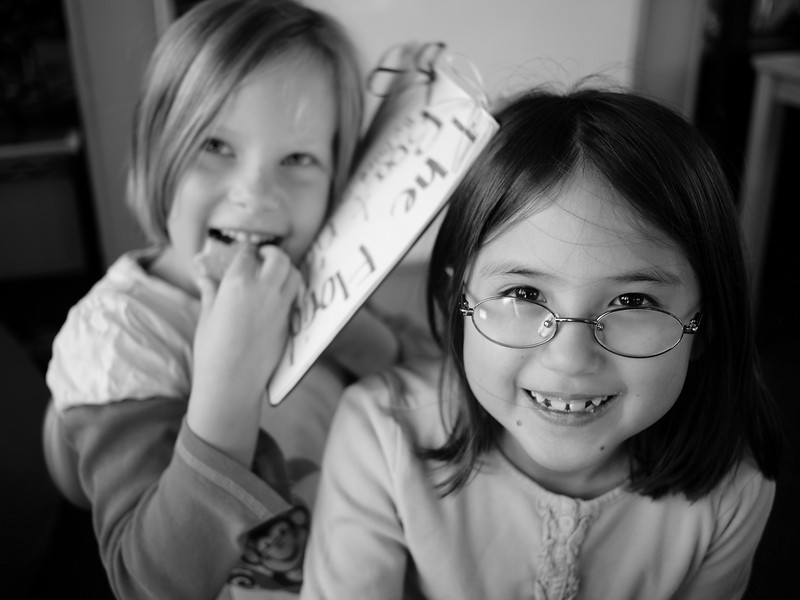 Grade 1 - Writers as Mentors