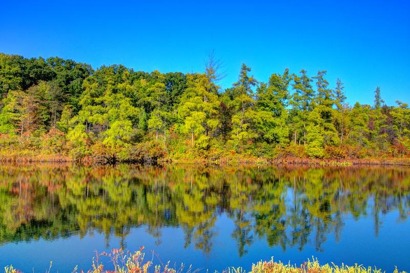 Triangle-Bog-Revenna-Beechnut-Photos-rjduff.jpg