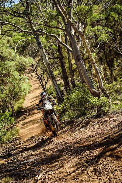2019 KTM Australia Adventure Rallye (569).jpg