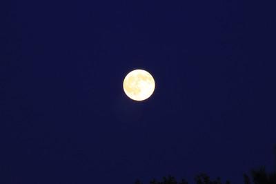 Moon 20090904