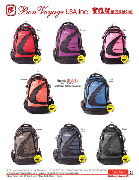 BackPack p21-X2.jpg