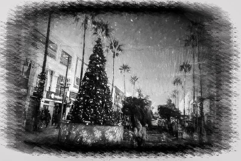 December 17 - Sant Monica Holiday Scene.jpg
