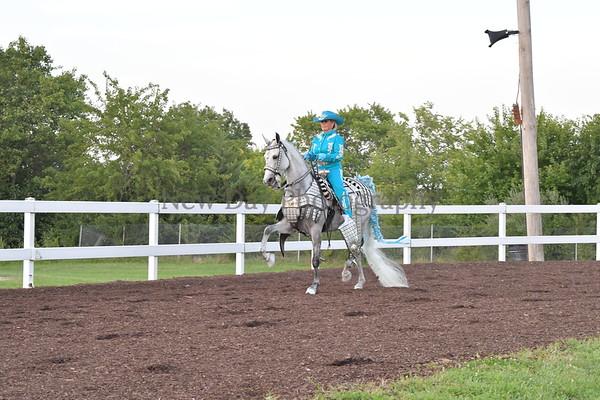45. Parade Horse Open