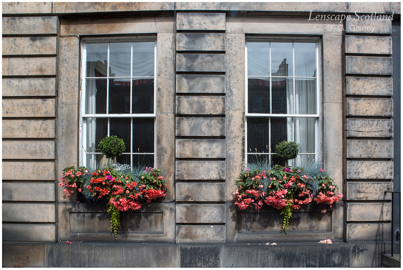 Flower boxes, Gloucester place