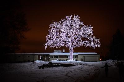 2013 Dec - Holiday Lights