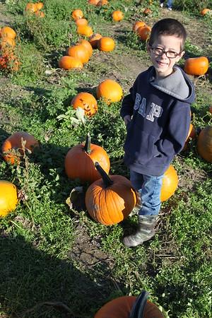 Pumpkin Patch 2015