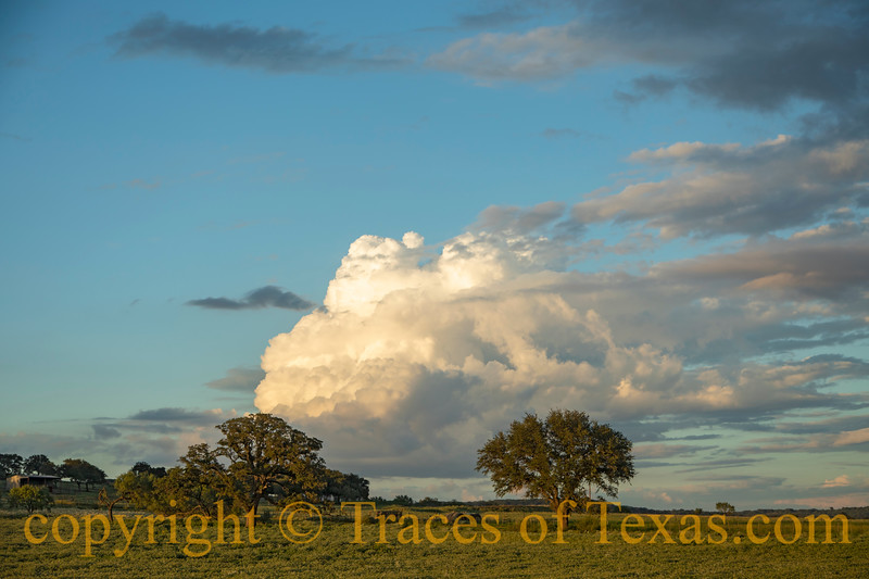Photos of Texas by Region