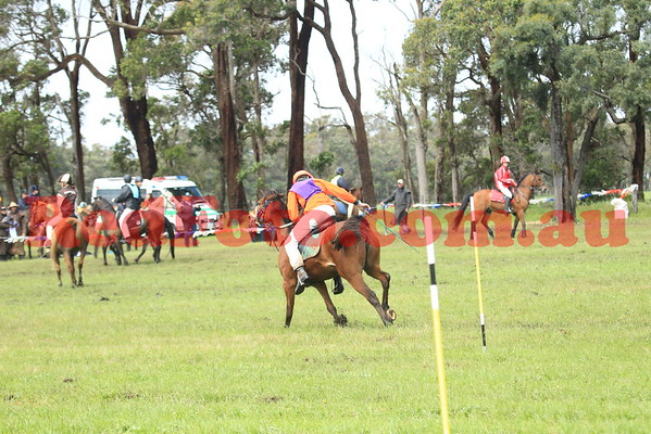 2014 09 27 PCAWA Active Riding Champs Finals Saturday Seniors Game 8