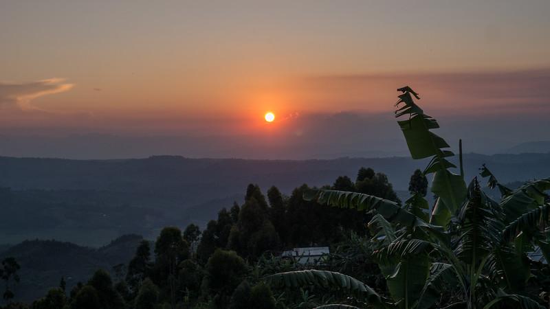 Nyugwe-Rwanda.jpg