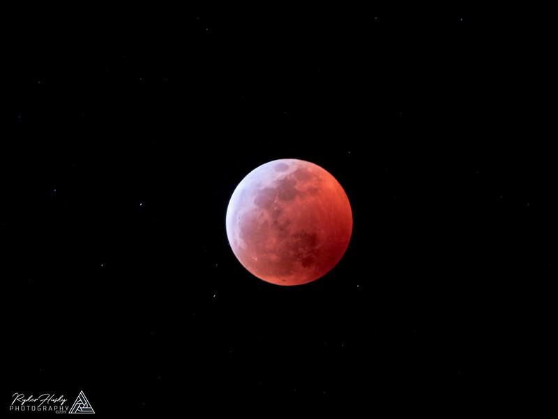 Super Blood Wolf Moon-004.jpg