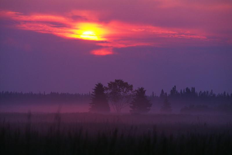 Lever de soleil - Parc régional de Pointe-aux-Outardes