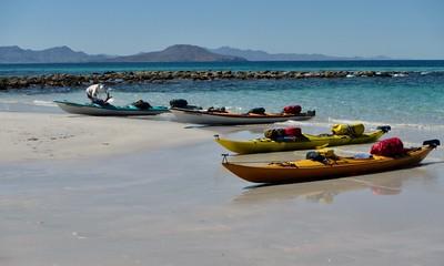 Baja, 2019