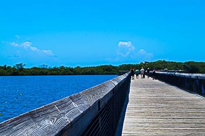 John D. MacArthur Beach State Park boardwalk, Singer Island, FL