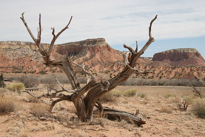 2006-03-21 Ghost Ranch