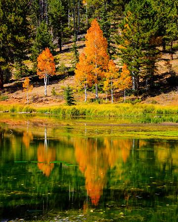 Southern Utah Autumn Colors