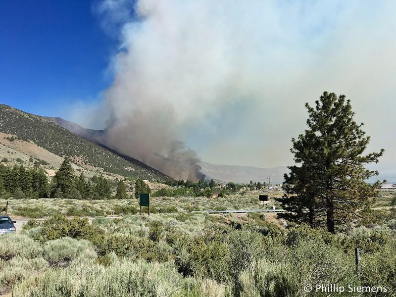 Wild fire near Lee Vining